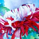 Watercolor of Chyrsanthimum